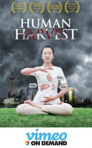 Human Harvest on Vimeo